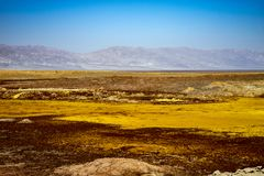 Hot springs in Dallol, Danakil Desert, Ethiopia Royalty Free Stock Photography