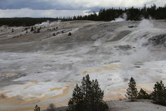 Hot Springs de parc national de yellowstone Photographie stock