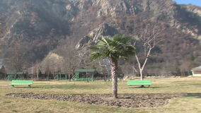 Hot springs and exotic palm trees in the Rupite, Bulgaria. Temple of Saint Petka built Vanga, Bulgarias tourist attractions, a place of pilgrimage for fans in stock footage