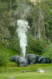 Hot Springs Fang Thailand royaltyfri bild