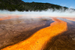 Hot Springs. Grand Prismatic Hot Springs mud flats in Yellowstone National Park, Wyoming royalty free stock photo