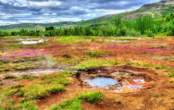 Hot springs in Haukadalur Valley - Iceland Stock Image