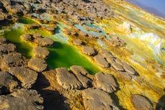 Hot Springs i Dallol, Danakil öken, Etiopien Royaltyfria Foton