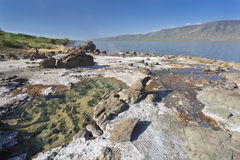 Hot springs at Lake Bogoria in Kenya Stock Image