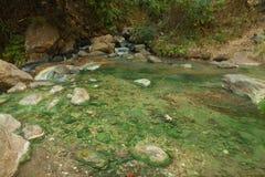 Hot Springs med par Royaltyfri Bild