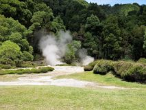 Hot springs near Furnas lake, Sao Miguel, The Azores Stock Image