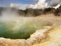 Hot Springs. Spectacular hot springs and mud pools of Rotorua, New Zealand Royalty Free Stock Image
