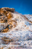 Hot springs. Hot spring terraces in Yellowstone national park Royalty Free Stock Photos