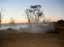 Hot springs. Steam rising from an artesian bore in central Australia Stock Photo
