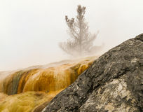Hot Springs vattenfall i den Yellowstone nationalparken Arkivfoto