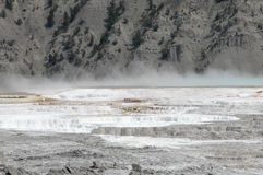 Hot Springs at Yellowstone Royalty Free Stock Photography