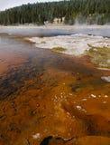 Yellowstone National Park, Wyoming, United States Royalty Free Stock Photography