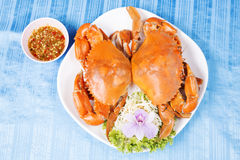 Hot Steam Big Crab Royalty Free Stock Images