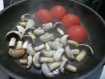 Uncooked fresh organic tomatoes and mushrooms Stock Images