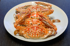 Hot steamed  blue crab Royalty Free Stock Photography