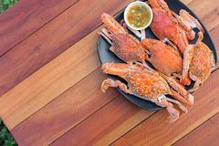 Hot Steamed Blue Crabs on the black plate Stock Photography
