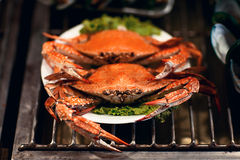 Hot Steamed Blue Crabs Stock Images