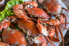 Hot steamed red crab prepare to eat Royalty Free Stock Images
