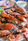 Hot steamed red crab prepare to eat Royalty Free Stock Photography