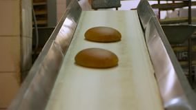 Hot steaming bread out of the oven at the bakery. stock footage