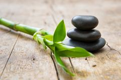 Hot stone with bamboo. Close up of stacked hot stones with green bamboo on wooden table. Black massage stones necessary for a hot rock treatment in a spa setting Stock Image
