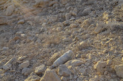 Hot stone desert Royalty Free Stock Photo