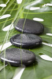 Hot stones on monstera leaf, close-up Royalty Free Stock Image