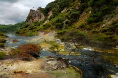 Hot Stream with mineral sediments, Waimangu Volcan Stock Image