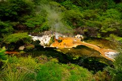 Hot Stream with mineral sediments, Waimangu Volcan Stock Photo