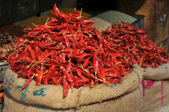 Hot stuff. Hot chili peppers piled up for sale in an Indian market Stock Photography
