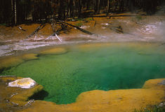 Hot sulfur pool in Yellowstone Royalty Free Stock Photos