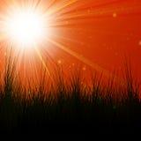 Hot summer sun royalty free illustration