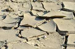 Dry ground in summer Royalty Free Stock Image