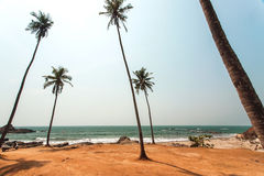 Hot sun over palm trees beach and calm waters of Indian ocean, Goa state landscape Stock Photo