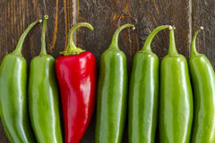 Hot Sweet and Chili Pepper Varieties Royalty Free Stock Photo