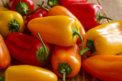 Hot Sweet and Chili Pepper Varieties Stock Photos