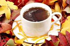 Hot tea in autumn Stock Image