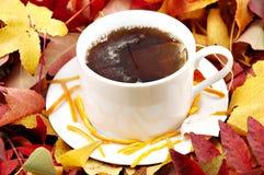 Hot tea in autumn stock image