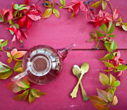 Hot tea in autumn Royalty Free Stock Images