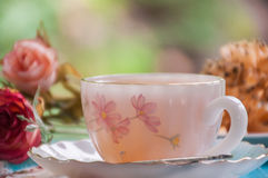 Hot tea in beautiful cup Royalty Free Stock Photo