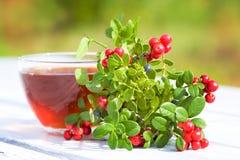 Hot tea and beries Stock Photos