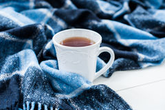 Hot tea and a blue checkered plaid Stock Image