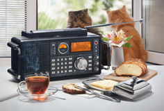 Hot tea, bread and oil on a table with the radio receiver against an open window. With cats Royalty Free Stock Image