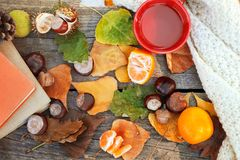 Hot tea and citrus fruit,flu season Stock Photos