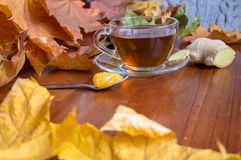 Hot tea with ginger and honey Royalty Free Stock Photography