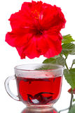 Hot tea and hibiscus flower Royalty Free Stock Image