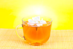 Hot tea with a jasmine flower Royalty Free Stock Photos