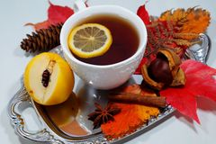 Hot tea with lemon in autumn and winter evenings - an alternative to antibiotics - selective focus Royalty Free Stock Photo