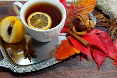 Hot tea with lemon in autumn and winter evenings - an alternative to antibiotics - selective focus Stock Photos
