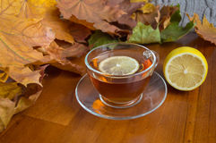 Hot tea with lemon Royalty Free Stock Photography